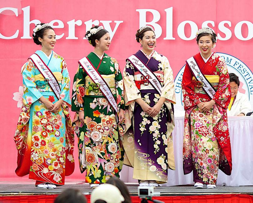 Visit the Cerry Blossom Festival