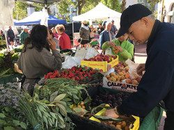 UCSF Farmers Market