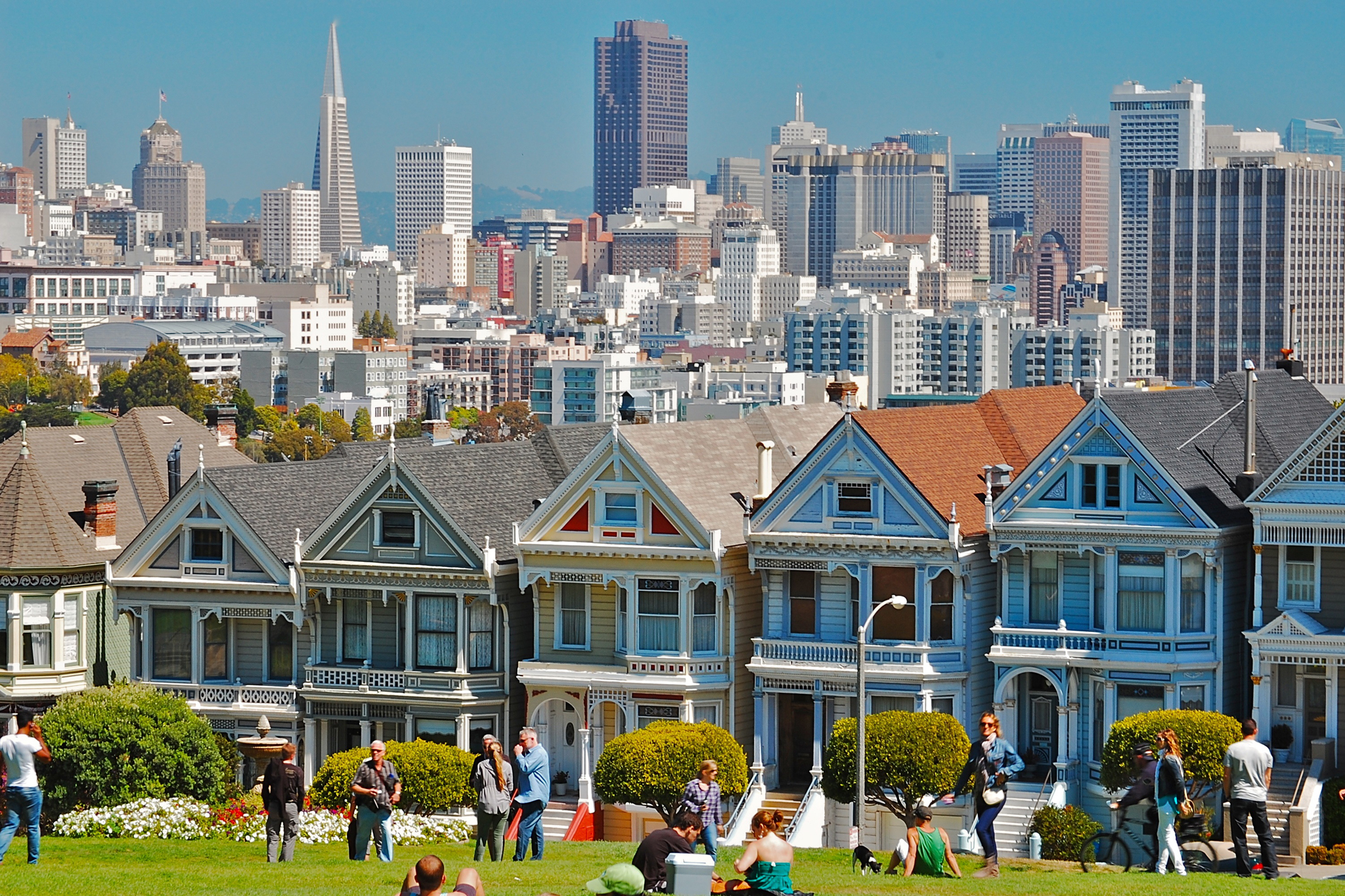 The Painted Ladies - Hayes Valley