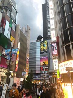 Photo Oct 20, 4 45 38 PM.jpg
