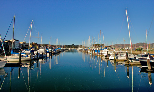 Jog the San Francisco Marina