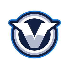 Team Vove main logo.png