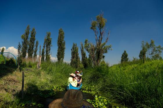 Visitas guiadas al humedal de Xochimilco