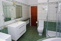 Downstairs - large bathroom