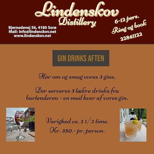 LD Gin Drinks aften.jpg