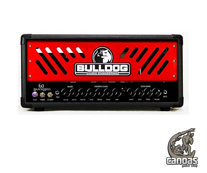 Amplificador Bulldog 60 Head
