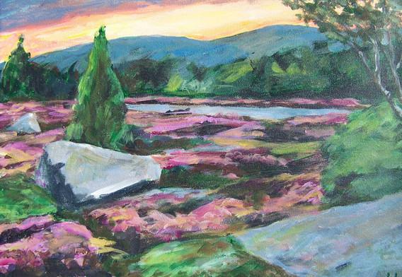 """""""Lavender Landscape"""""""