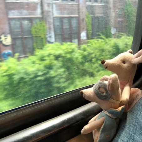 mauslings on a train