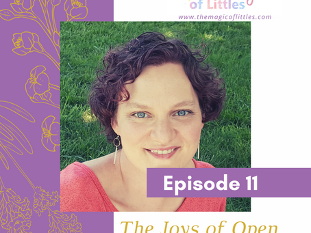 Episode #11: The Joys of Open-Ended Play with Ruth Rau
