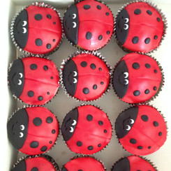 Cupcakes ladybird