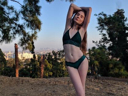 Hollywood Hills, California  2019