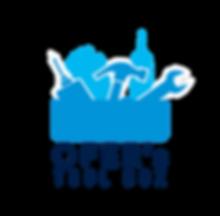 לוגו גדול לפיס.png