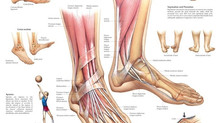 Plantar Fasciatis and Carpal Tunnel: Feet/Ankles & Hands/Wrists