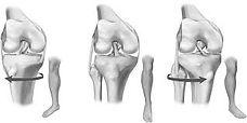knee valgus varus neutral ligaments rota