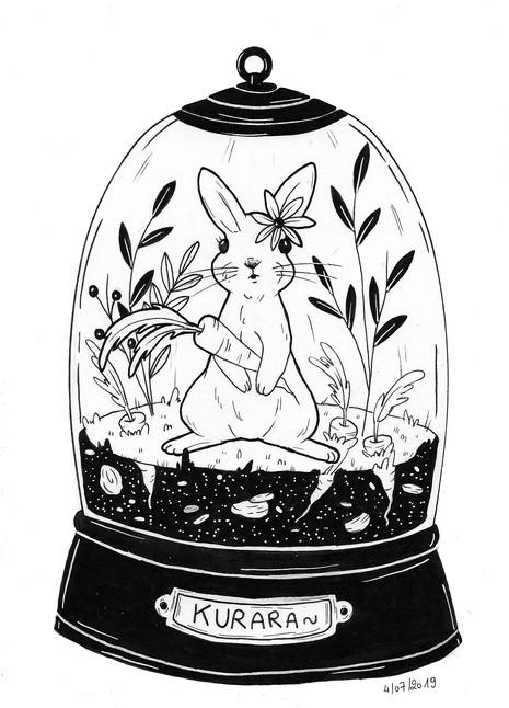 Le lapin sous cloche