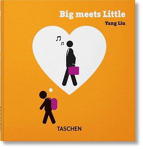 Yang Liu - Big Meets Small