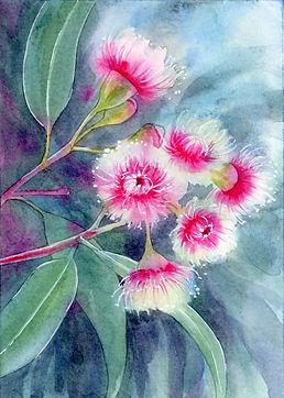 Flowering Gum- Fairy floss painting web