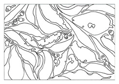 A4 Colour Me Prints-Leaf Pattern 1.jpg