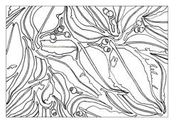A4 Colour Me Prints-Leaf Pattern 2.jpg