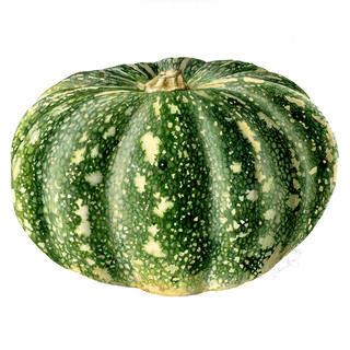 Kent Pumpkin web.jpg