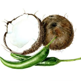chilli coconut web.jpg