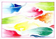Postcard Demo rainbow watercolour.jpg