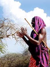 Kenya, Masai