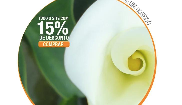 Mail Marketing Flores Online
