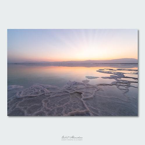 זריחה בים המלח, תמונה למכירה