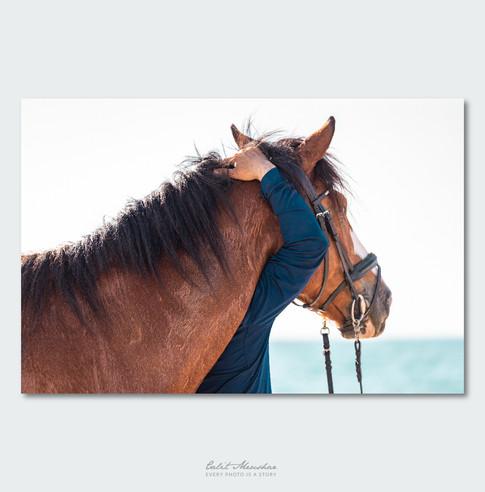 דמות חובקת סוס