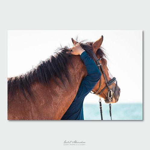 דמות חובקת סוס על הים