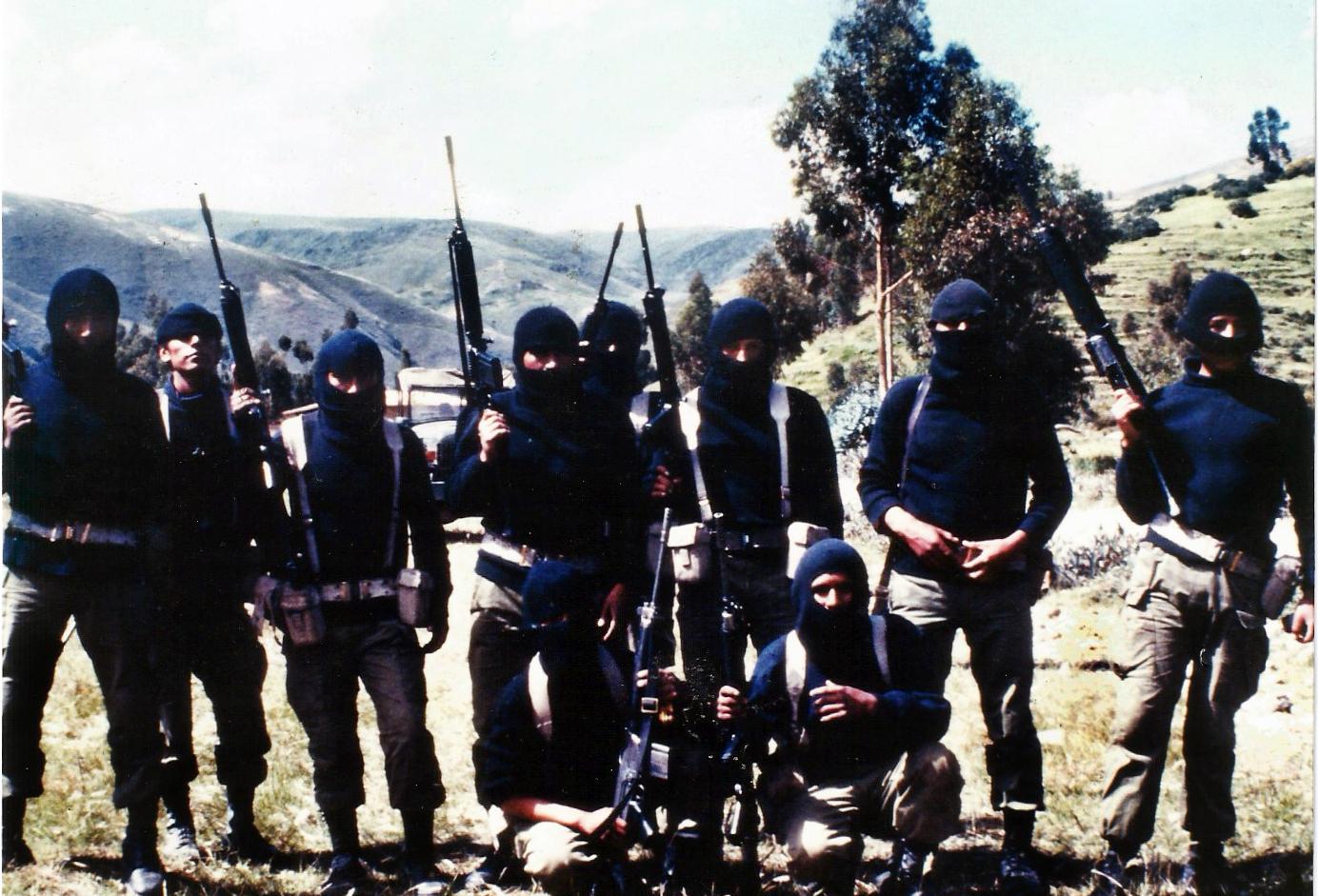 Guerrillas