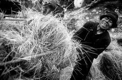 Los Ultimos Hieleros del Chiborazo