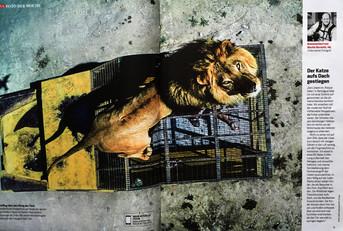 """Publicación en la Revista Alemana FOCUS, la historia fotográfica sobre """"Un zoológico al revés&q"""