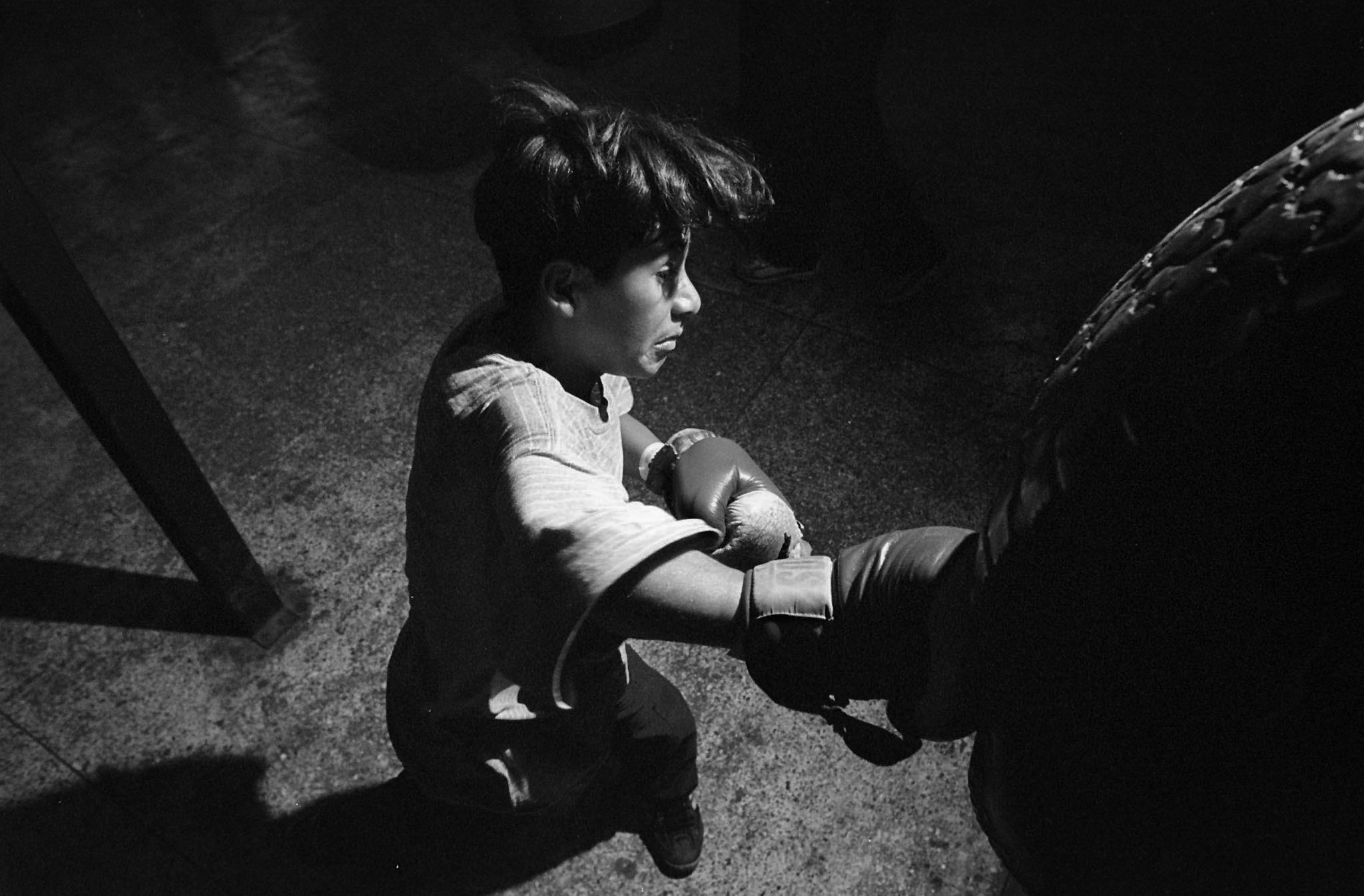 Niños Boxeadores