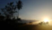 Screen Shot 2019-01-26 at 2.30.53 PM.png