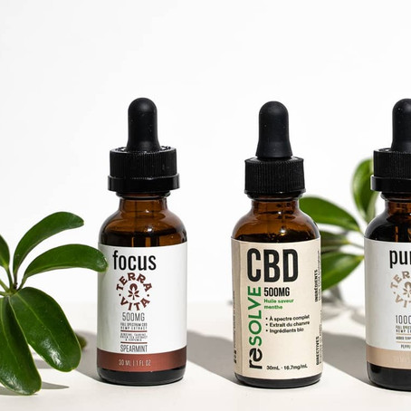 CBD 101: The Ultimate Guide For Beginners