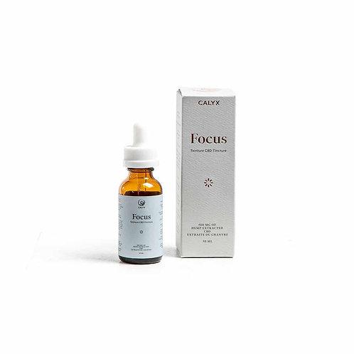 Focus 500mg Oil - Calyx Wellness