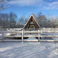 Snow at Hilton Green