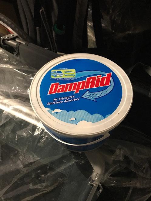 Damp get rid