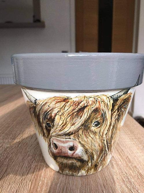 Cow pot 2