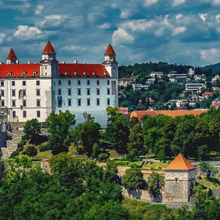Web-Conference hosted by Slovakia 2021