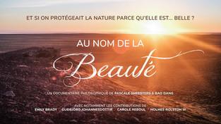 Film : Au nom de la Beauté