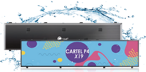 CARTEL-P4-X19.png