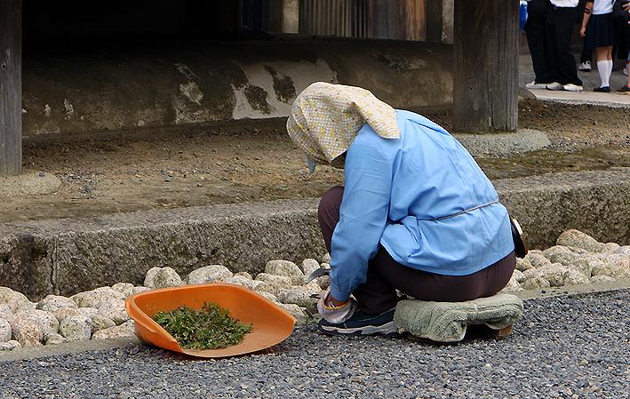 Soji no Kiyomizu - 清水寺