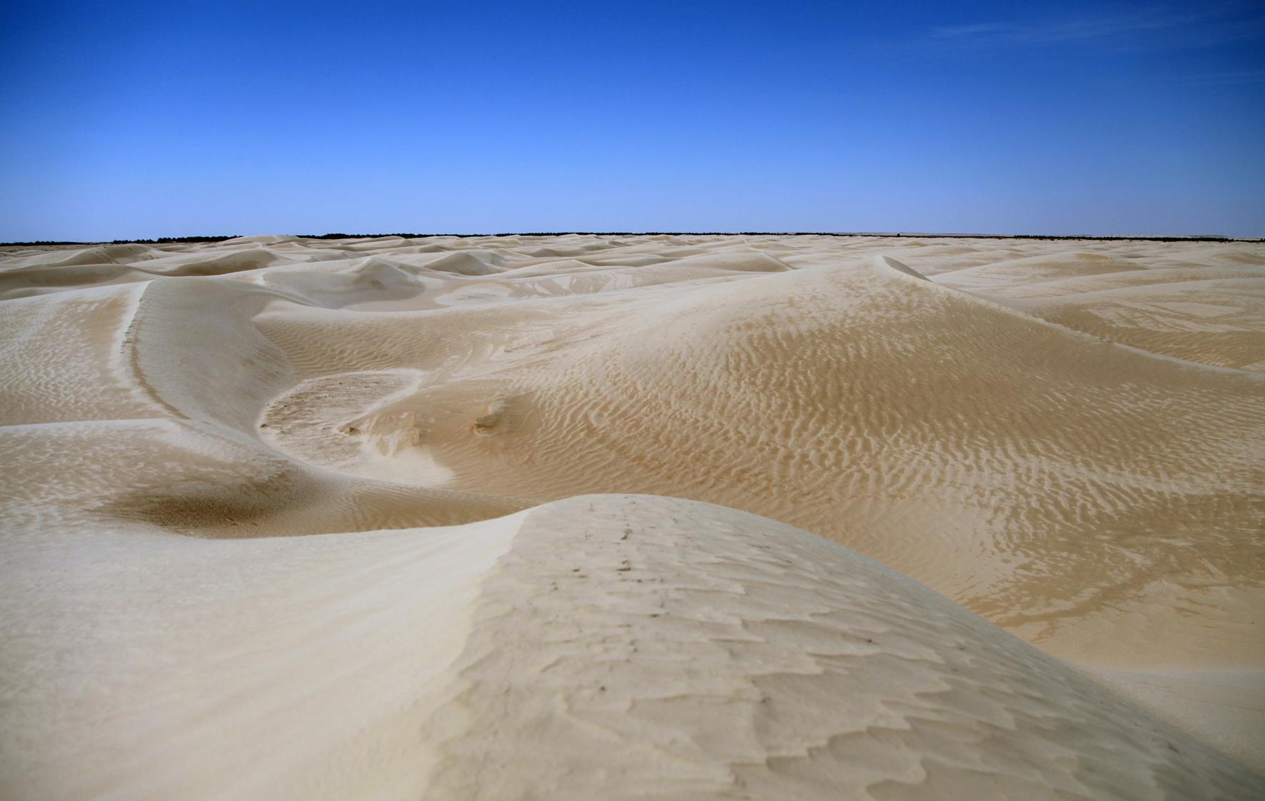 Silêncio de Deserto