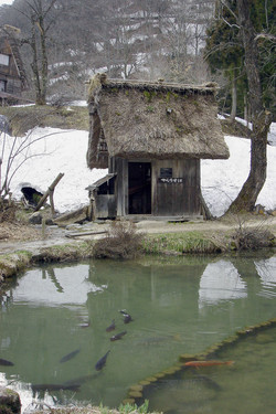 Shirakawa Antiga - 白川鄉