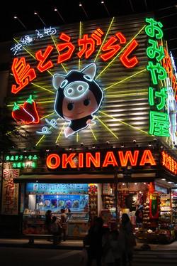 Okinawa - 沖縄県
