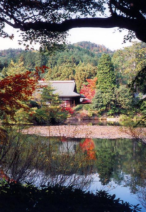 Ryoan-ji 竜安寺