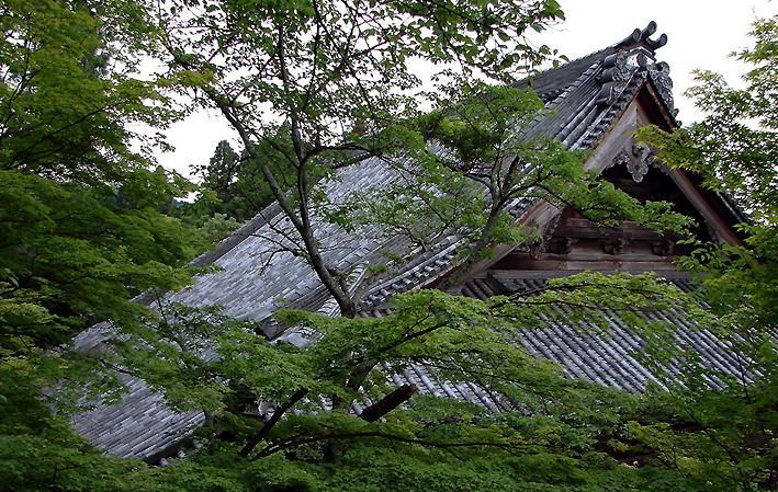 Eikan-do Zenrinji 永観堂禅林寺